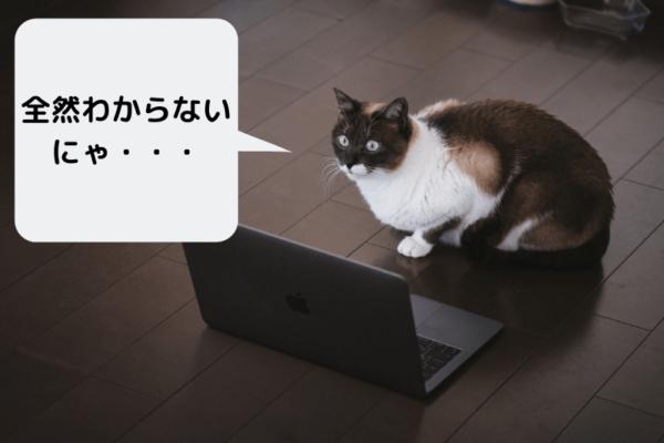 PCの使い方が分からない猫